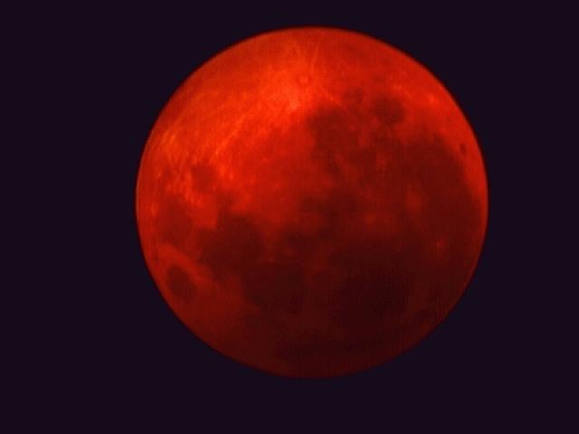 moon sekte gefährlich